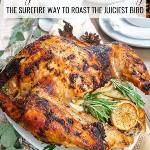 Hot and irresistible roasted turkey
