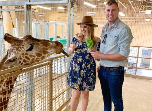 Zoo Date - List of Fun Date Ideas