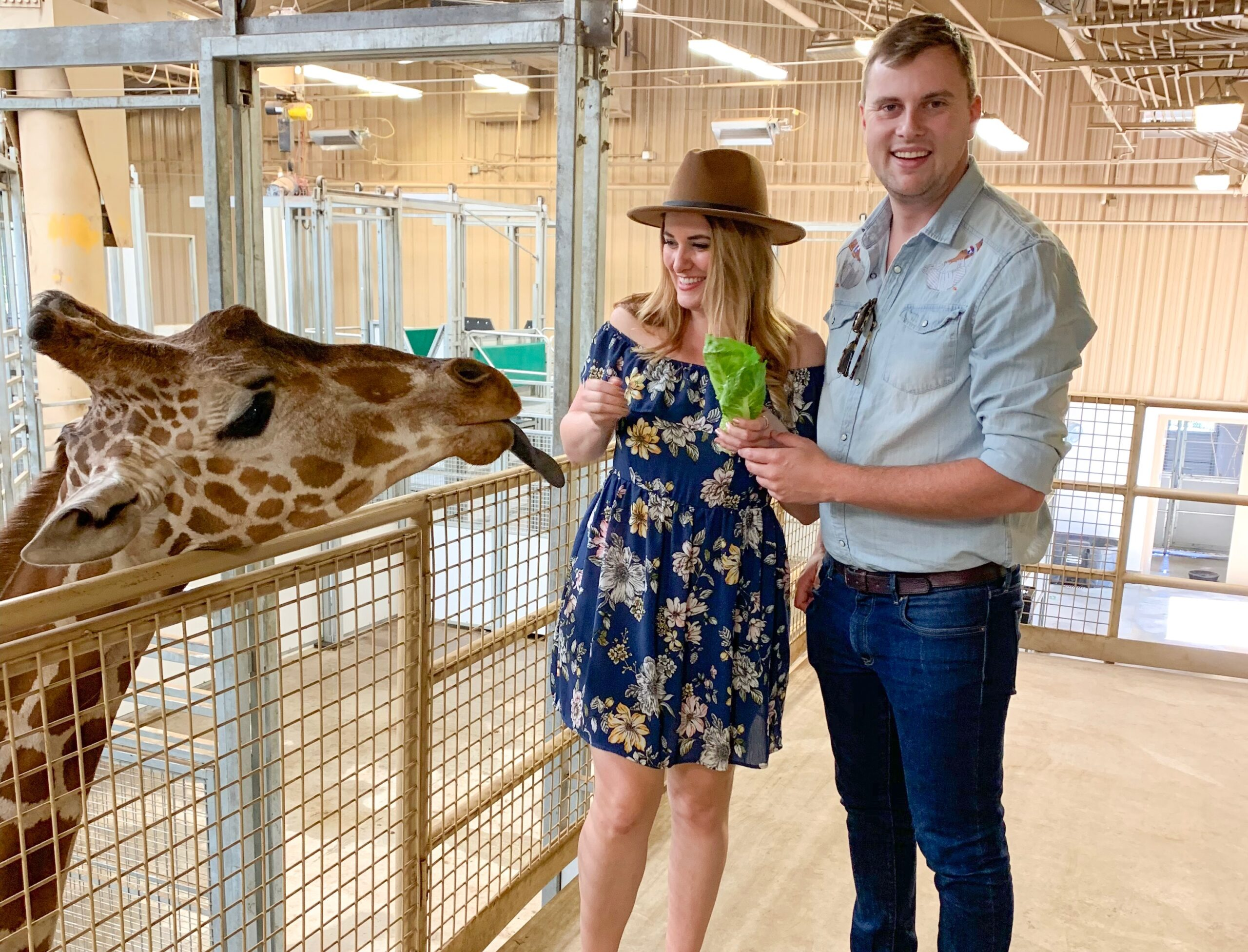 Zoo Date - List of Fun Date Ideas