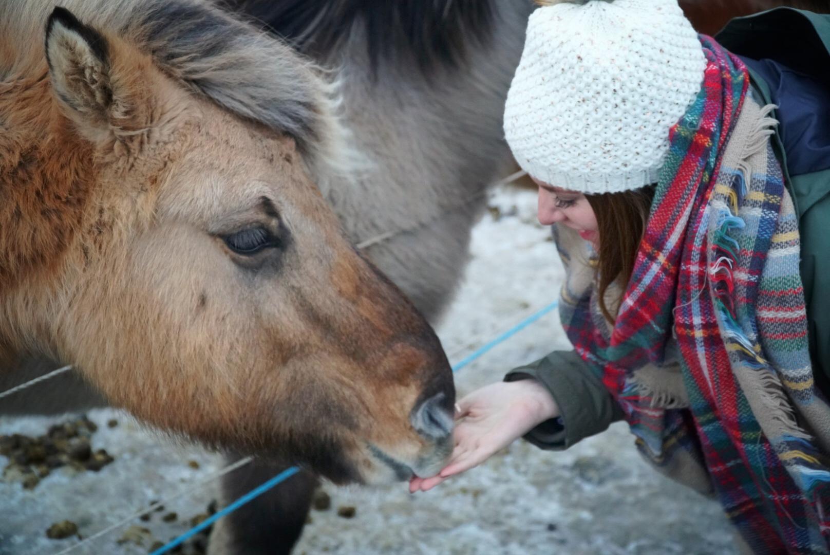 Horseback Riding Date - Romantic Date ideas
