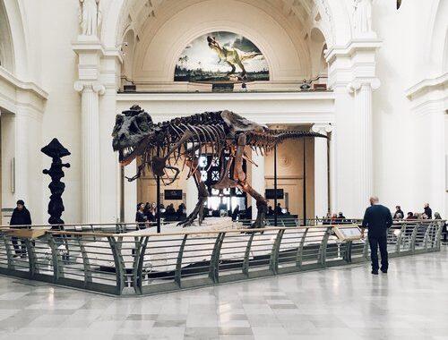 Museum Date Idea - List of Date Ideas