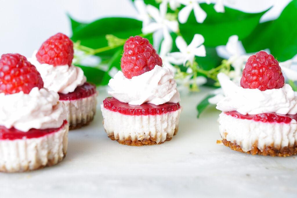 Keto Friendly Raspberry Mini Cheesecake Recipe