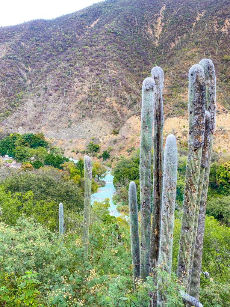 Mexico Hot Springs