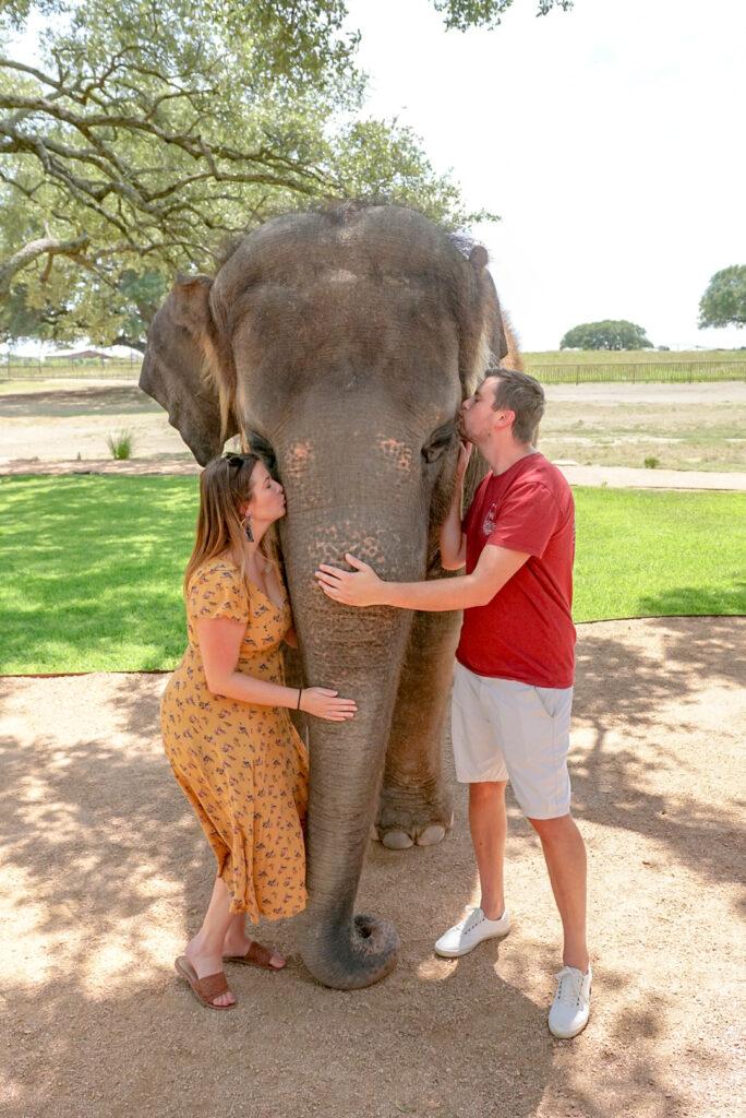 Elephant Sanctuary Texas
