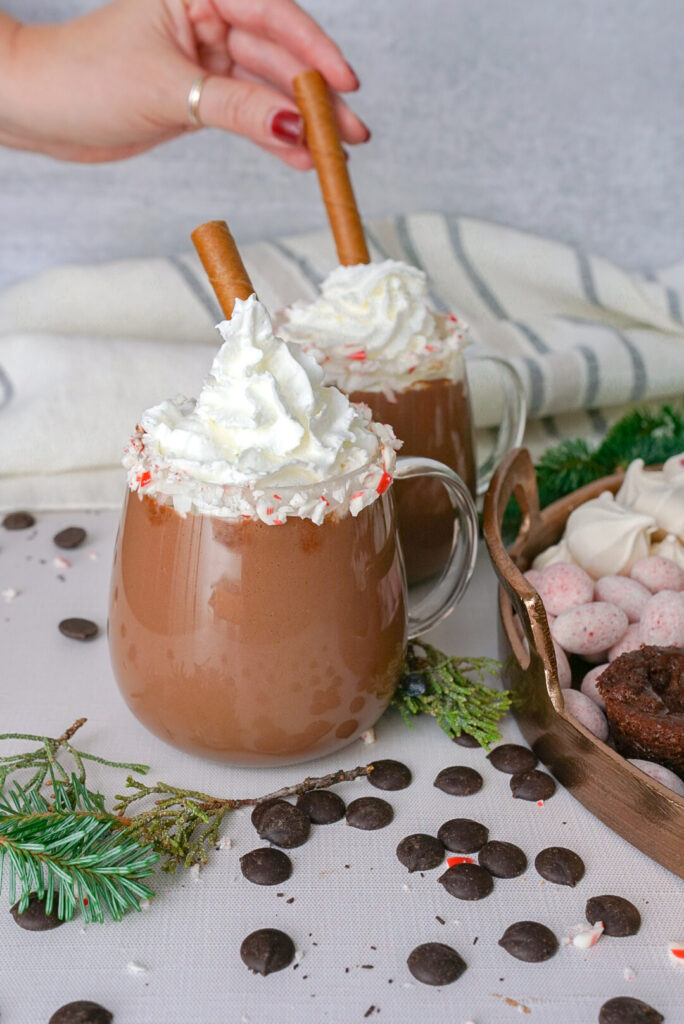 Crockpot Hot Chocolate Recipe