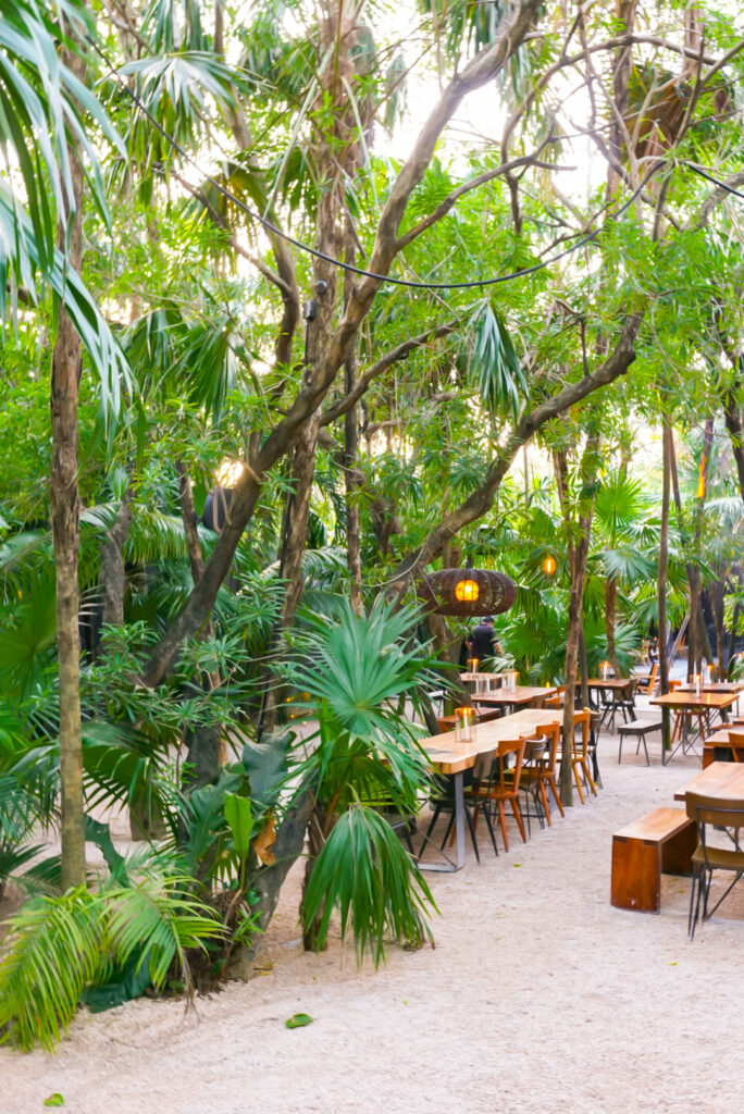 Best Tulum Restaurants