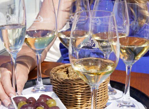 Best Santorini Winery